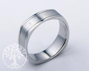 Edelstahl-Ring ER760