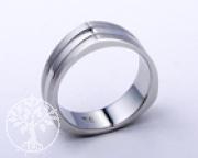 Edelstahl-Ring ER765