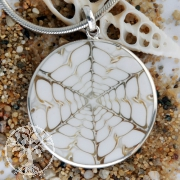 Shell pendant Spider with real silver eyelet