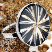 Spider-Shell Ring sterling Silver 2