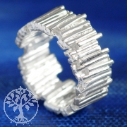 Silber Ring Palisade