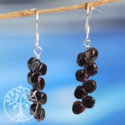 Earhooks with Garnet