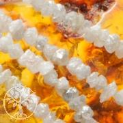 Diamant Halskette Weiß/Hellgrau 2.4/2.7mm Rohdiamantkette