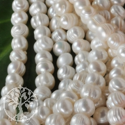 Cultured Pearls Ringed 7mm