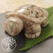 Ozean Jaspis Schildkroete Steingravur