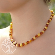 Amber Necklace Bicolor