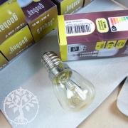 Light bulb salt crystal