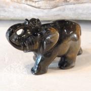 Tigerauge Elefant